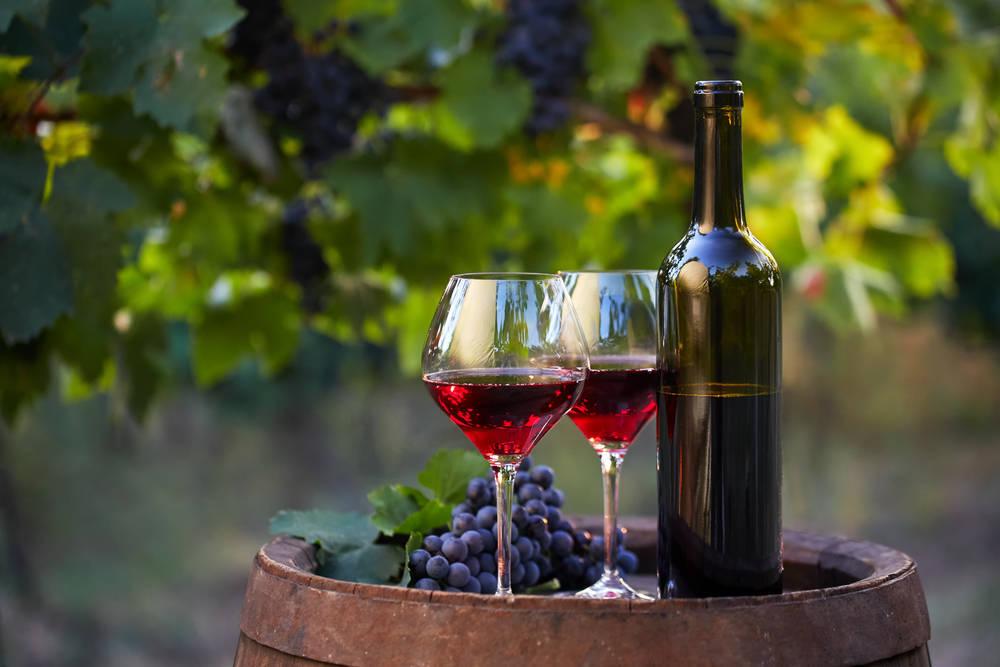 Exportcave. El Fascinante Mundo de las Copas de Vino